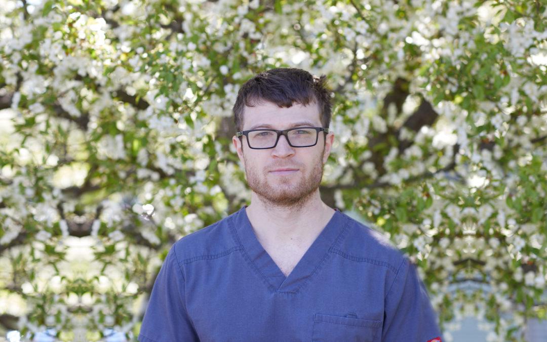 Anthony Mesolella, DDS, Dental Care
